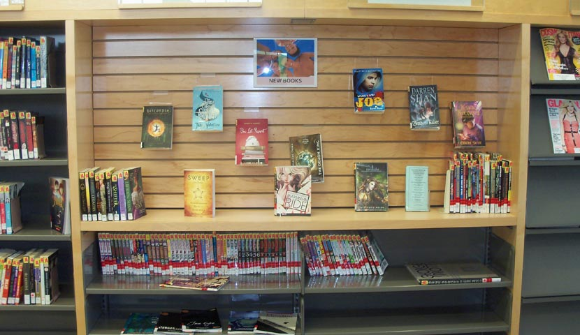 Cookstown Public Library Wall Display 2