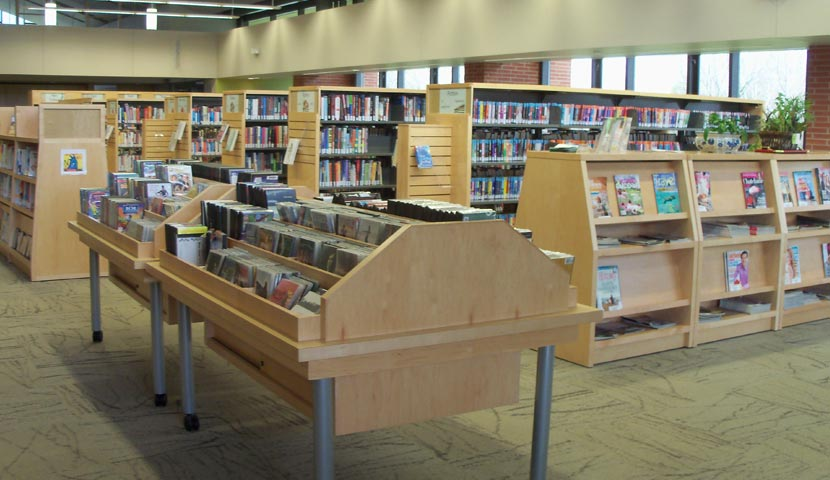 Cookstown Public Library Media Display
